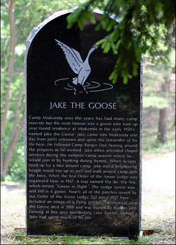 Jake the Goose Tombstone with Story of the Camp's Mascot