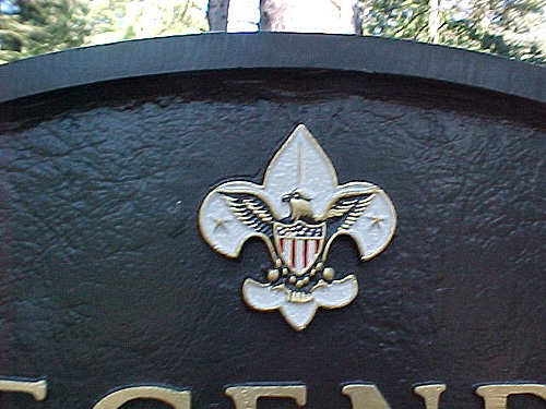 Close-up of Scout Logo